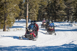 Friends snowmobiling along trail